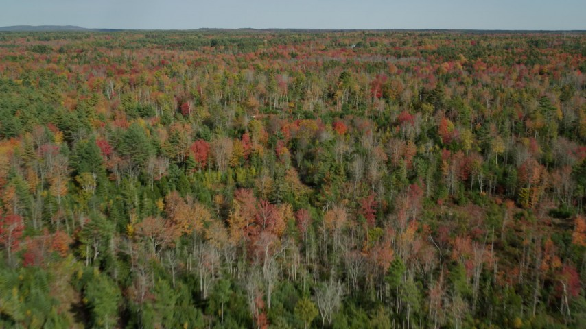 6k aerial video flying over colorful forest, approach isolated rural home, autumn, Cushing, Maine Aerial Stock Footage | AX148_037