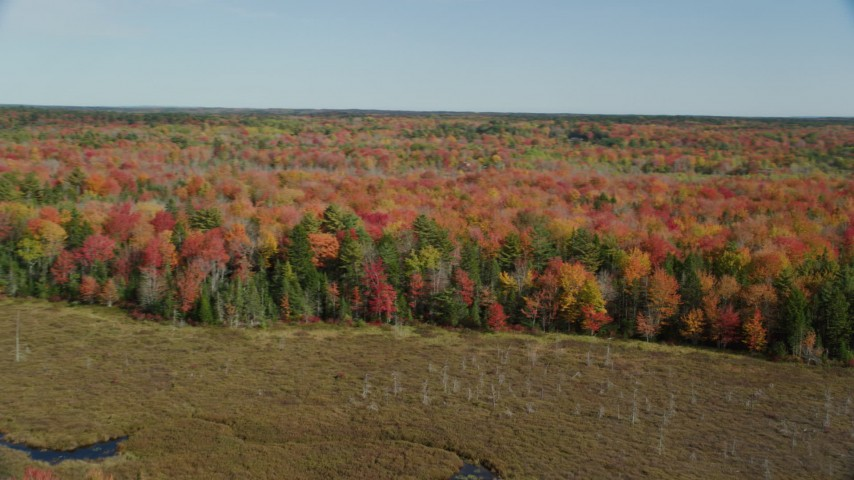 6k stock footage aerial video approaching a colorful forest landscape, autumn, Cushing, Maine Aerial Stock Footage | AX148_041