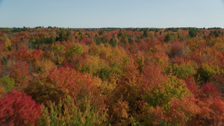6k aerial video flying over a colorful landscape autumn, Cushing, Maine Aerial Stock Footage | AX148_042