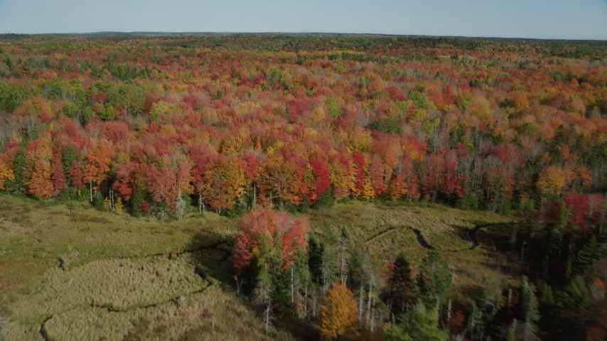 6k stock footage aerial video flying over colorful forest landscape, tilting down, autumn, Cushing, Maine Aerial Stock Footage | AX148_045