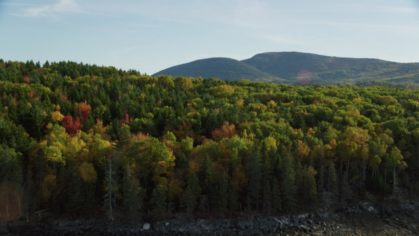Fly over color changing trees toward harbor and coastal town, autumn, Bar Harbor, Maine Aerial Stock Footage | AX148_211