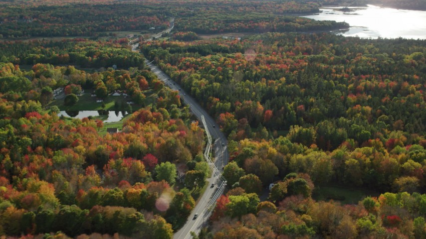 6K stock footage aerial video flying away from road and over forest with fall foliage, Bar Harbor, Maine Aerial Stock Footage | AX148_234