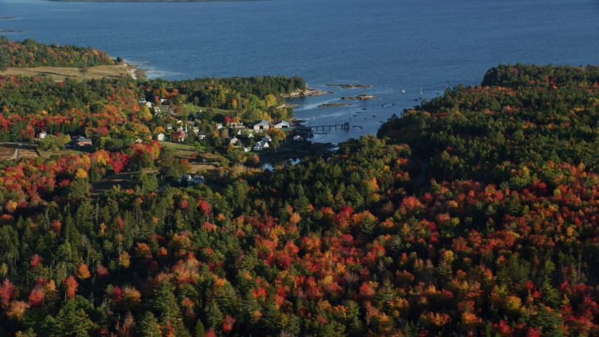 6K aerial video flying over autumn forest away from a coastal neighborhood, Blue Hill, Maine Aerial Stock Footage | AX149_014
