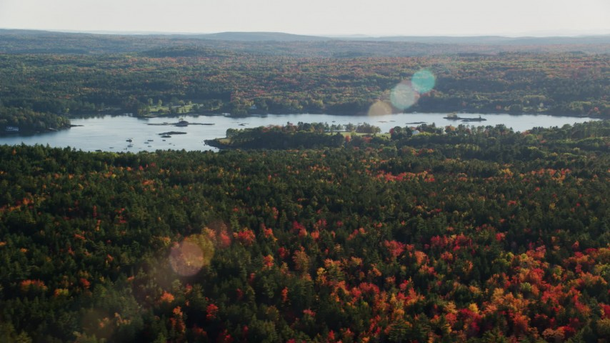 6K stock footage aerial video flying over forest with fall foliage along a river, Blue Hill, Maine Aerial Stock Footage | AX149_015