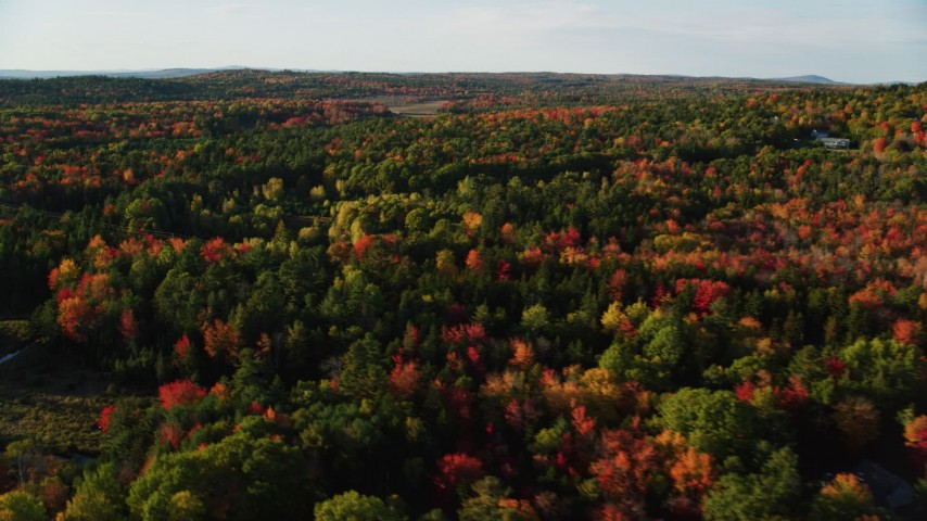 6K aerial video flying over forest with colorful fall foliage, Blue Hill, Maine Aerial Stock Footage | AX149_035