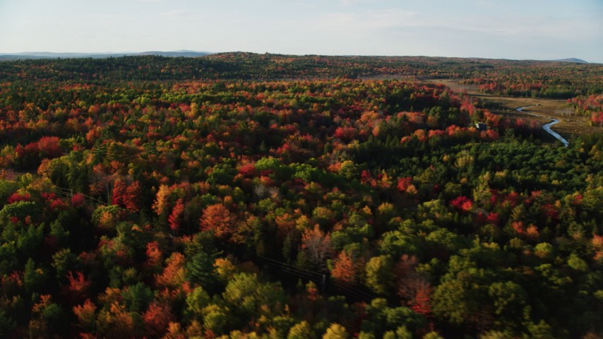 6K stock footage aerial video flying over  a forest filled with colorful fall foliage, Blue Hill, Maine Aerial Stock Footage AX149_036 | Axiom Images
