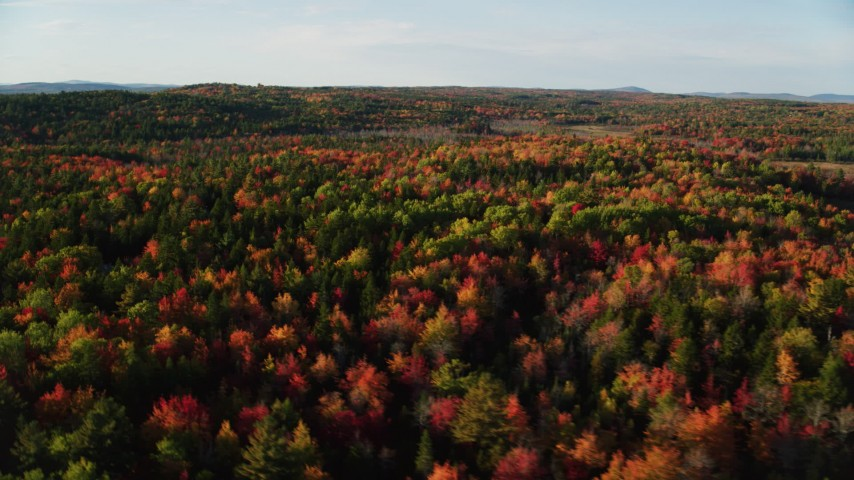 6K stock footage aerial video flying over colorful forest in autumn, Blue Hill, Maine Aerial Stock Footage | AX149_037
