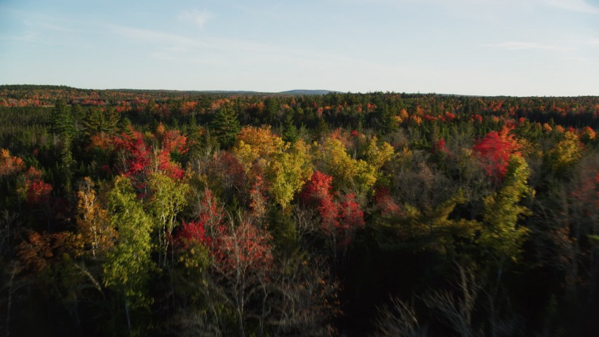 6K stock footage aerial video flying over colorful fall foliage and evergreen trees, autumn, Blue Hill, Maine Aerial Stock Footage | AX149_051