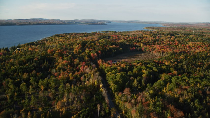 6K aerial video approaching, flying over rural road through colorful forest, autumn, Castine, Maine Aerial Stock Footage | AX149_083