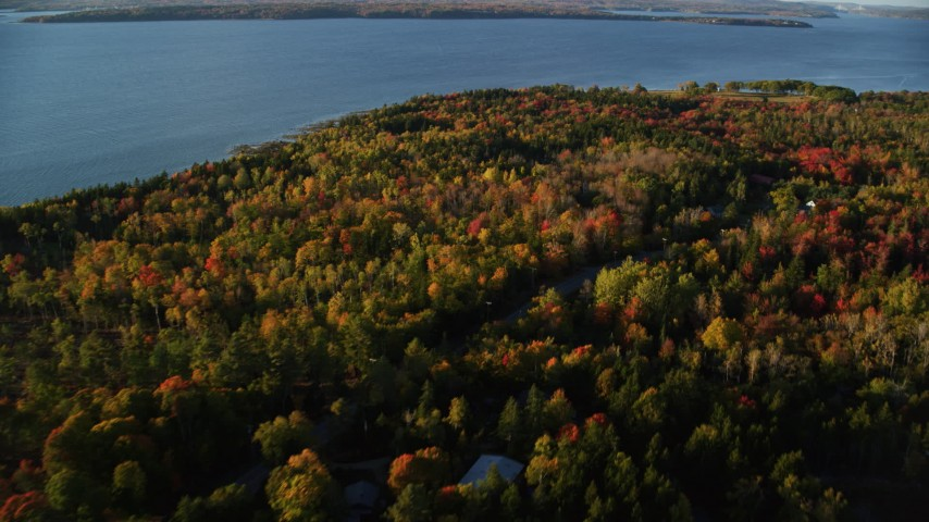 6K aerial video flying over colorful forest, rural road and homes, autumn, Castine, Maine Aerial Stock Footage | AX149_084