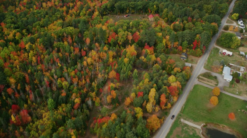 6K stock footage aerial video of a bird's eye view over forest, revealing rural homes, autumn, Leeds, Maine Aerial Stock Footage | AX150_031