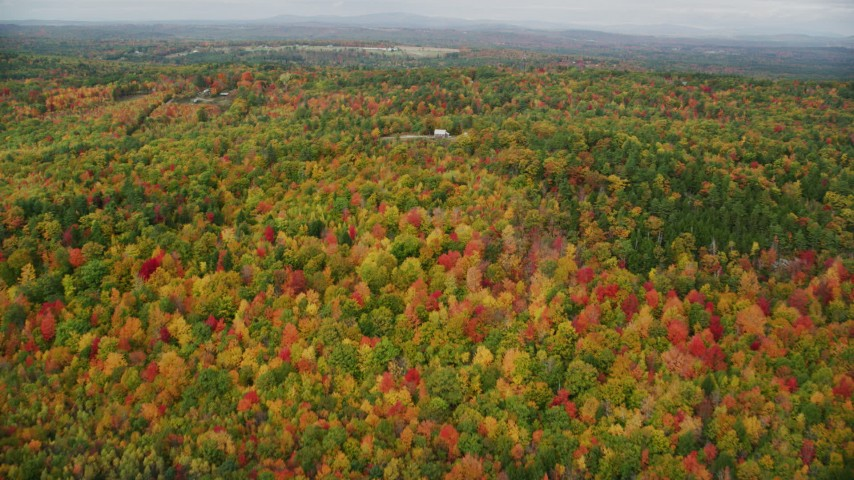6K stock footage aerial video flying over colorful forest, approach an isolated home, autumn, Leeds, Maine Aerial Stock Footage | AX150_032