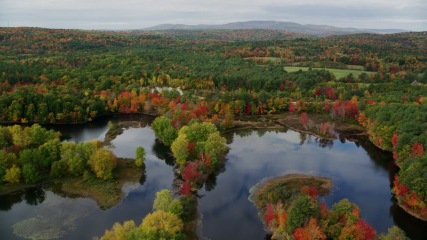 6K stock footage aerial video flying over Nezinscot River, approach colorful forest, autumn, Turner, Maine Aerial Stock Footage | AX150_052