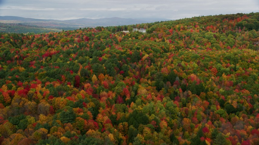 6K stock footage aerial video flying over colorful forest, approaching an isolated home, Turner, Maine Aerial Stock Footage | AX150_054