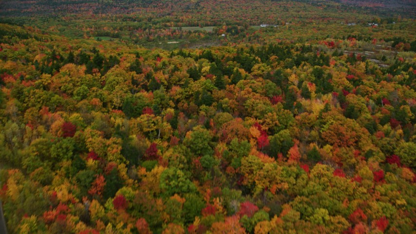 6K stock footage aerial video flying over colorful forest, tilt up, reveal rural residential area, autumn, Paris, Maine Aerial Stock Footage | AX150_073