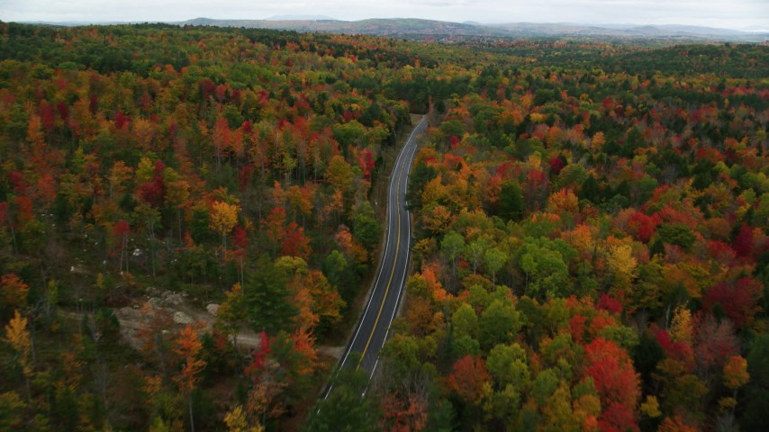 6K stock footage aerial video flying over Buckfield Road, brightly colored trees in autumn, Paris, Maine Aerial Stock Footage | AX150_076