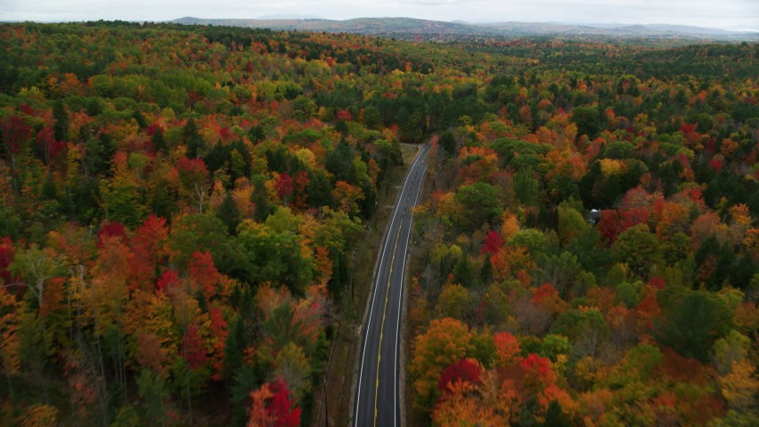 6K stock footage aerial video flying over Buckfield Road, forest of colorful trees, autumn, Paris, Maine Aerial Stock Footage | AX150_077