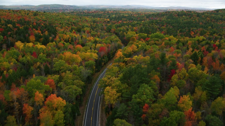 6K stock footage aerial video flying over brightly colored forest, Buckfield Road, autumn, Paris, Maine Aerial Stock Footage | AX150_078