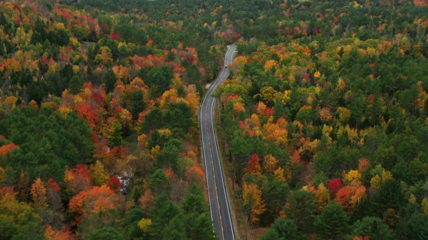 6K stock footage aerial video flying over Buckfield Road, forest of brightly colored trees, autumn, Paris, Maine Aerial Stock Footage | AX150_081
