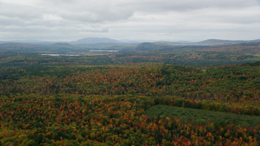 6K stock footage aerial video flying by colorful forest in autumn, overcast, Norway, Maine Aerial Stock Footage | AX150_108