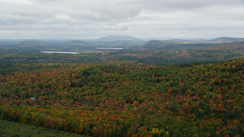 6K stock footage aerial video flying by forest of colorful trees in autumn on an overcast day, Norway, Maine Aerial Stock Footage | AX150_109