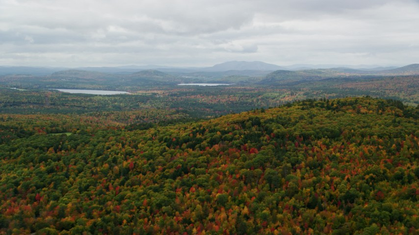 6K stock footage aerial video flying by dense, colorful forest, overcast, autumn, Norway, Maine Aerial Stock Footage | AX150_110