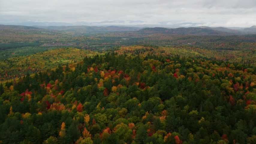 6K stock footage aerial video approaching and flying over dense, colorful forest, autumn, overcast, Norway, Maine Aerial Stock Footage | AX150_111