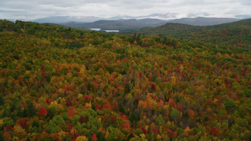6K stock footage aerial video flying over dense, brightly colored forest, autumn, Lovell, Maine Aerial Stock Footage | AX150_133