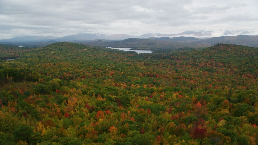 6K aerial video flying over dense forest in autumn, approach Cezar Lake, overcast, Lovell, Maine Aerial Stock Footage | AX150_134