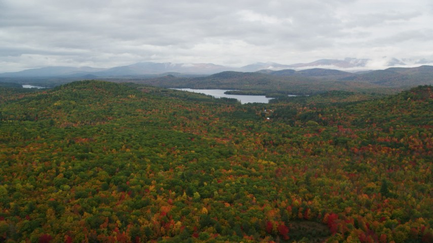 6K aerial video flying over colorful forest, approach Cezar Lake, autumn, overcast, Lovell, Maine Aerial Stock Footage | AX150_135