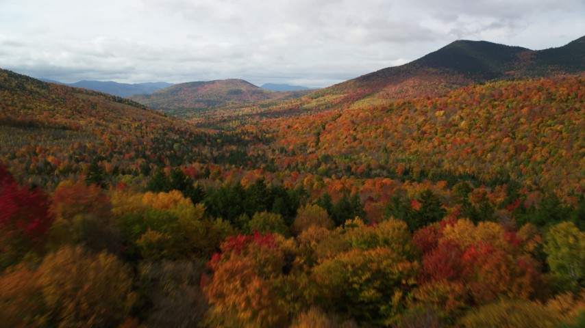 6K stock footage aerial video flying low over colorful forest in autumn, approaching White Mountains, New Hampshire Aerial Stock Footage | AX150_157