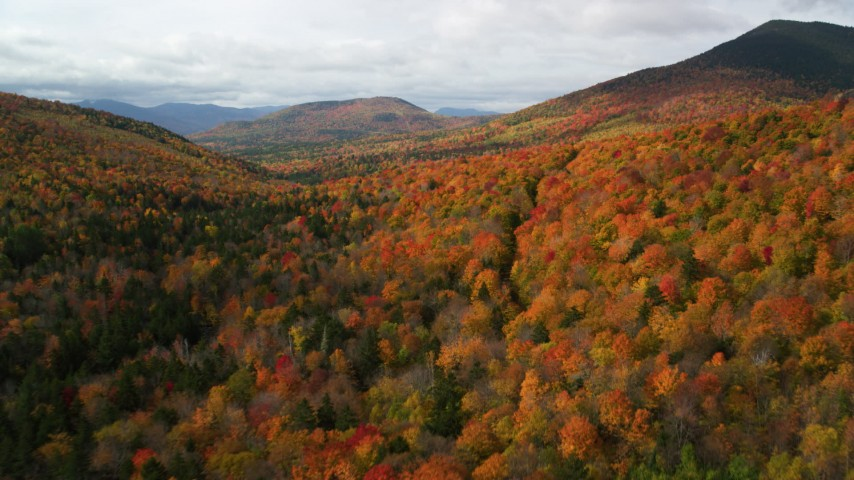6K stock footage aerial video flying over forest in autumn, approach White Mountains, New Hampshire Aerial Stock Footage | AX150_158