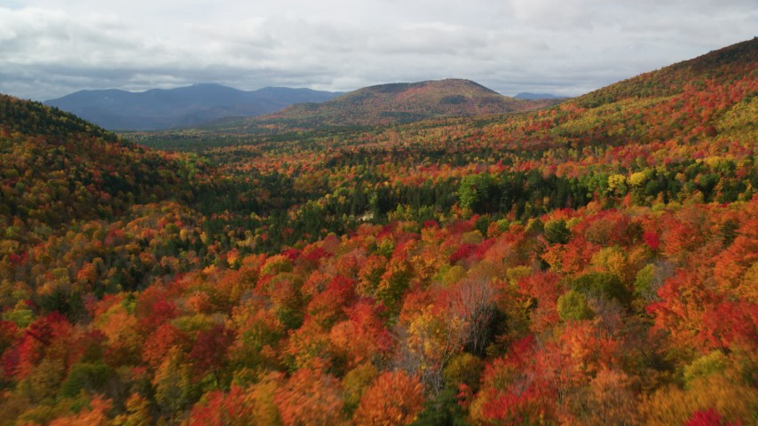 6K stock footage aerial video flying over colorful forest, autumn, approach clouds, White Mountains, New Hampshire Aerial Stock Footage | AX150_160