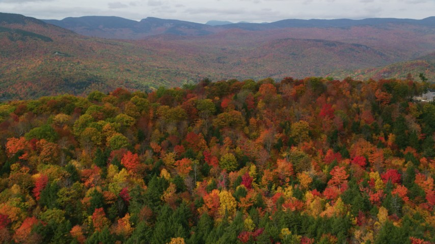 6K stock footage aerial video approaching colorful forests, White Mountains, New Hampshire Aerial Stock Footage | AX150_168