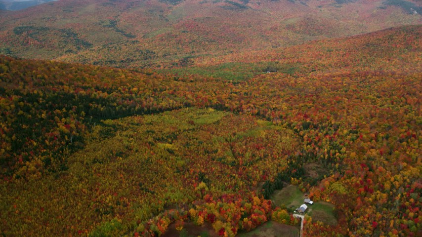 6K stock footage aerial video flying over isolated home, forest, autumn, overcast, White Mountains, New Hampshire Aerial Stock Footage | AX150_186