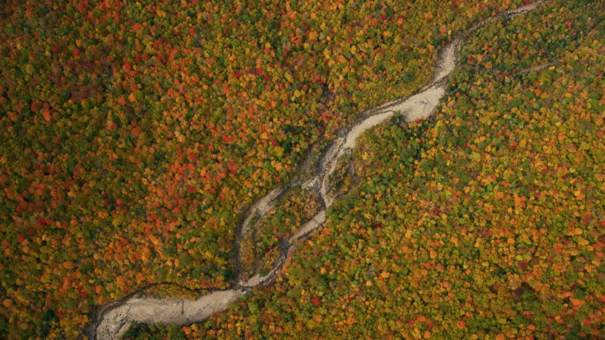 6K stock footage aerial video of a bird's eye view of colorful autumn forest, river, White Mountains, New Hampshire Aerial Stock Footage | AX150_190
