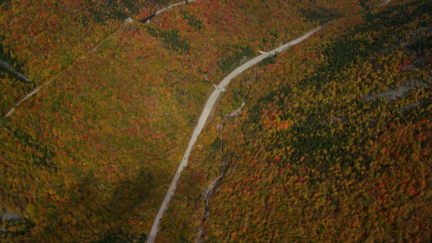 6K stock footage aerial video of a bird's eye view over forest, Highway 302, overcast, autumn, White Mountains, New Hampshire Aerial Stock Footage | AX150_198