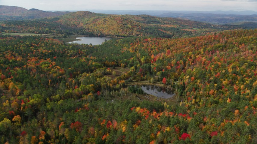 6K stock footage aerial video flying over a forest, approaching Pearl Lake, autumn, Lisbon, New Hampshire Aerial Stock Footage | AX150_260
