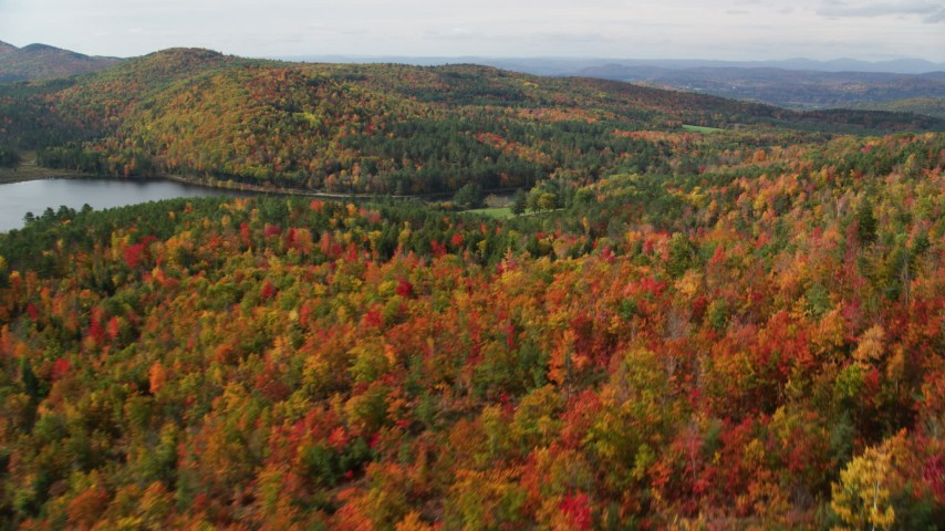 6K stock footage aerial video flying over a colorful forest, Pearl Lake, autumn, pan right, Lisbon, New Hampshire Aerial Stock Footage | AX150_261