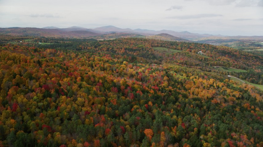 6K stock footage aerial video flying over a colorful forest under overcast skies, autumn, Wells River, Vermont Aerial Stock Footage | AX150_311