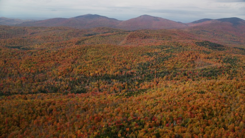 6K stock footage aerial video flying over colorful forest, approaching distant peaks, autumn, Topsham, Vermont Aerial Stock Footage | AX150_320