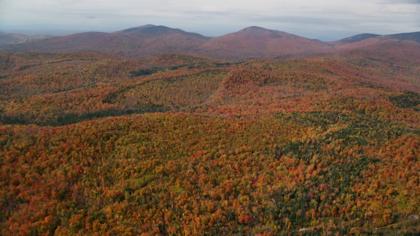 6K stock footage aerial video flying over forest, approach distant peaks, autumn, overcast, Topsham, Vermont Aerial Stock Footage AX150_321 | Axiom Images