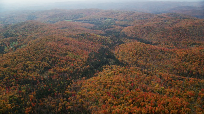 6K stock footage aerial video flying by colorful forest, overcast skies, autumn, Topsham, Vermont Aerial Stock Footage | AX150_323