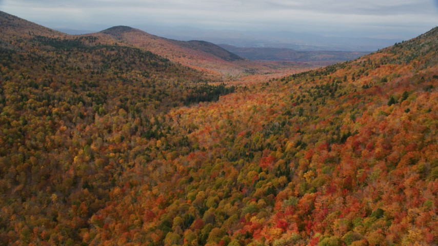 6K stock footage aerial video flying over colorful forest through mountains, autumn, overcast, Orange, Vermont Aerial Stock Footage | AX150_325