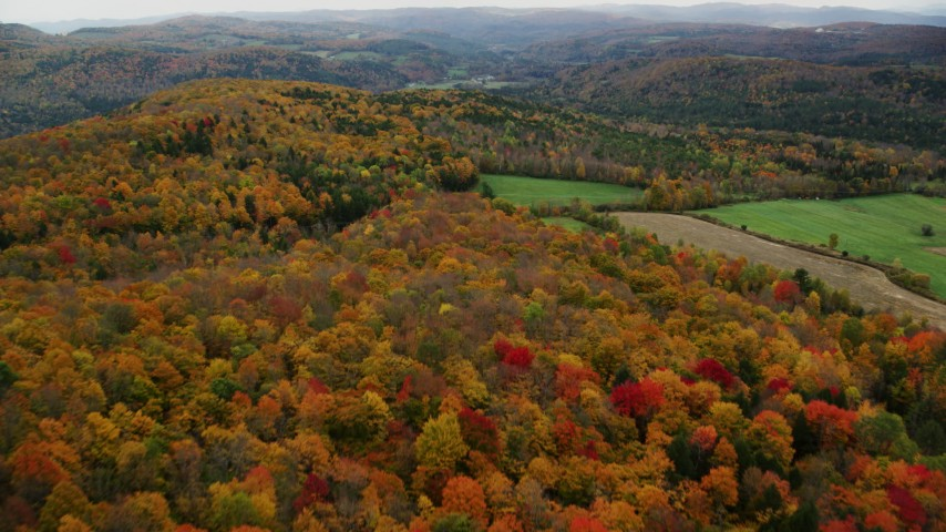 6K stock footage aerial video flying over colorful forest, farmland, autumn, overcast, Randolph Center, Vermont Aerial Stock Footage | AX150_413