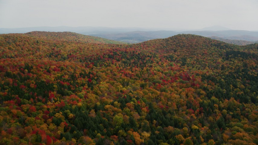6K stock footage aerial video flying over brightly colored, forested hills, autumn, North Pomfret, Vermont Aerial Stock Footage | AX150_462
