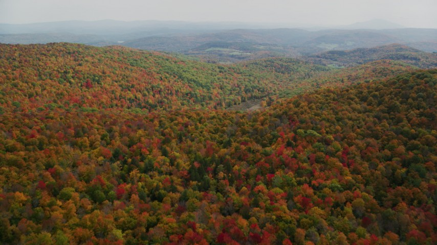 6K stock footage aerial video flying over brightly colored, densely forested hills, autumn, North Pomfret, Vermont Aerial Stock Footage | AX150_463