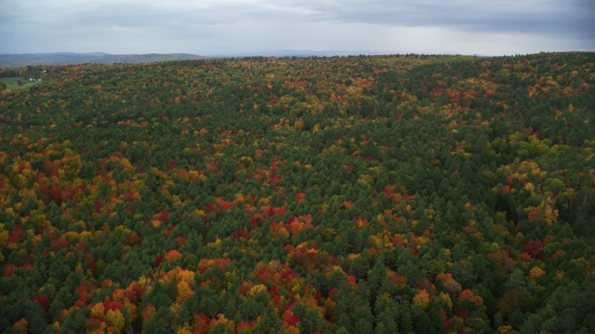 6K stock footage aerial video flying over densely forested hills, autumn, White River Junction, Vermont Aerial Stock Footage AX151_002 | Axiom Images