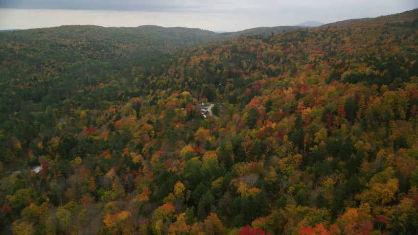 6K stock footage aerial video flying over brightly colored forested hills, approach rural homes, autumn, Taftsville, Vermont Aerial Stock Footage | AX151_037