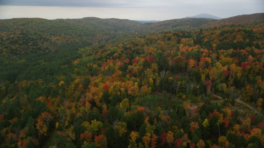 6K stock footage aerial video flying over brightly colored forested hills, autumn, overcast, Taftsville, Vermont Aerial Stock Footage | AX151_038